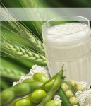 Amway_Protein-567