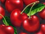 cherries960-129