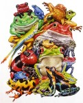 Frog pile – Humanitees merchandise and Serendipity Puzzle
