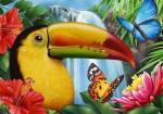 toucan_jungle-576